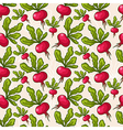 cute seamless hand drawn radish background vector image vector image