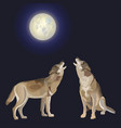 howling gray wolves vector image