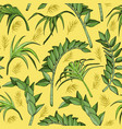 jungle seamless pattern with tropical plant vector image vector image