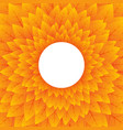 abstract nature orange circular background vector image