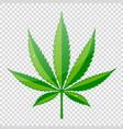 cannabis hemp leaf flat icon vector image