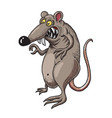 Cartoon image of evil rat vector image