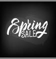 chalkboard blackboard lettering spring sale vector image vector image