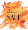fall autumn sale banner with paint and leaves vector image