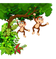 happy monkey cartoon hinging vector image vector image