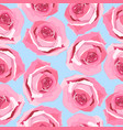 rose handdrawn pattern background floral vector image