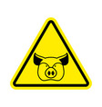 warning pig swine on yellow triangle road sign vector image vector image