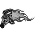 zebra head with flames design vector image