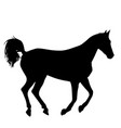animal silhouette of black mustang horse vector image