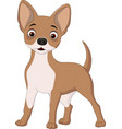 cartoon happy dog vector image
