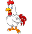 cartoon happy rooster vector image vector image