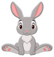 cute barabbit cartoon sitting vector image vector image