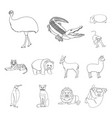 different animals outline icons in set collection vector image vector image