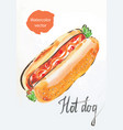 hot dog watercolor vector image