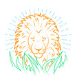 icon of a lion in the grass vector image