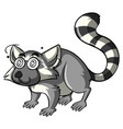 lemur with dizzy eyes vector image