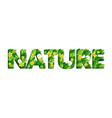 nature word made beautiful paper cut flowers vector image vector image