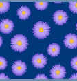 purple aster daisy seamless on indigo blue vector image