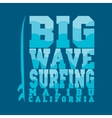 surfing Malibu California surfing T-shirt vector image