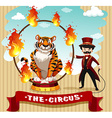 Tiger in fire hoop and ring master vector image