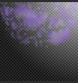 violet flower petals falling down great romantic vector image