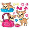 cute dog theme image 1 vector image
