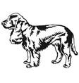 decorative standing portrait of dog field spaniel vector image vector image