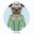 fashion animal pug doggy hipster vector image