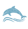 grunge dolphin silhouette vector image vector image