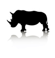 rhino animal vector image