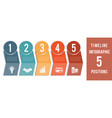 template for infographic timeline colored vector image vector image