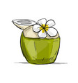 coconut juice with frangipani flower vector image