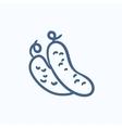 Cucumber sketch icon vector image vector image