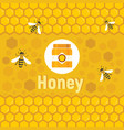 honey concept vector image vector image