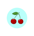 Icon Colorful Cherry vector image vector image
