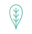 line natural leaf ecology care vector image vector image
