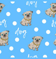 seamless pattern kid s cute dog vector image
