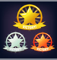 set of victory stars made of gold silver vector image