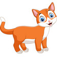 smiling cat cartoon isolated on white background vector image vector image