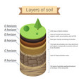 soil layers soil is a mixture of plant residue vector image