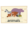 wordcard design for word animals vector image