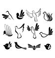 Abstract bird symbol set vector image
