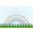 Landscape with grass and rainbow vector image