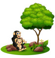 cartoon chimpanzee mother hug her baby chimp under vector image vector image