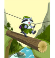 scout raccoon goes on a log crossing mountain vector image vector image