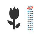 tulip icon with free bonus vector image