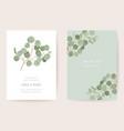 wedding eucalyptus green leaf branches floral vector image