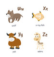 animal alphabet with wolf x-ray fish yak zebra vector image vector image