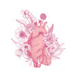 beautiful realistic anatomical heart overgrown vector image