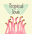 Flamingo for Tropical love vector image vector image